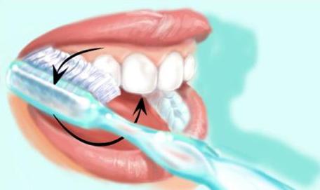 Technique de brossage des dents 3