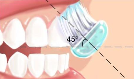 Technique de brossage des dents 4