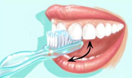 Technique de brossage des dents 5