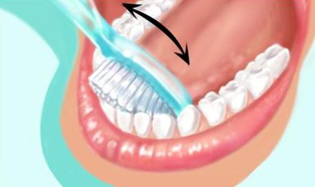 Technique de brossage des dents 6